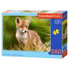 Little Fox on the Meadow