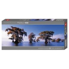 Bald Cypresses - Atchafalaya River USA