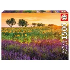 Feld Mit Sonnenblumen und Lavendel
