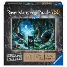 Puzzle Escape 7 - Curse of the Wolves