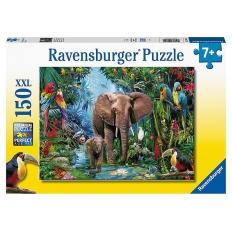 Dschungel Elefanten