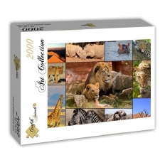 Collage - Wildlife