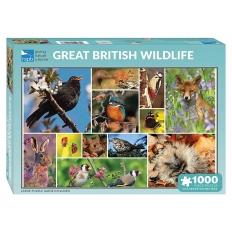 Great British Wildlife