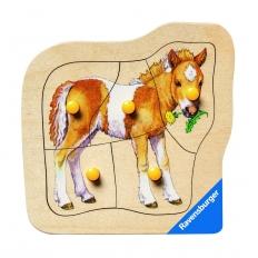 Liebes Pony