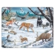 Winter Wildlife in Siberia and Northeast Asia