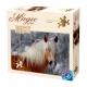 Haflinger Pferdekopf - Magie der Pferde