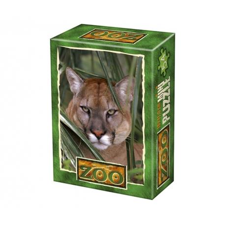 Puma im Versteck
