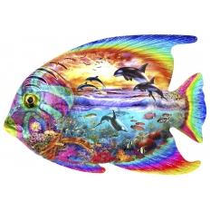 Aquatic Fanatic