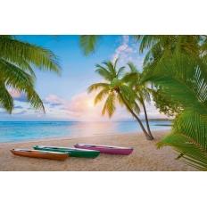 Palmenparadies