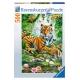 Tiger im Urwald