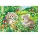 Süsse Koalas und Pandas