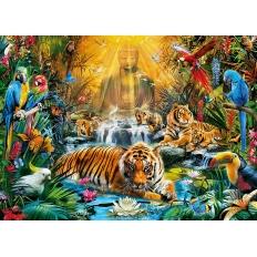 Mystic Tigers