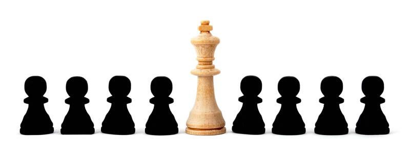 Schach: Könige und Bauern